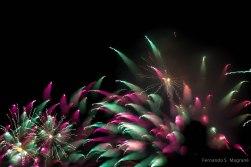 Fireworks_7934