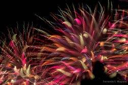 Fireworks_7938