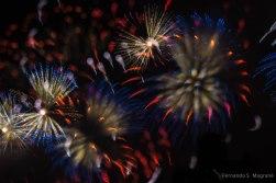 Fireworks_7947