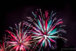 Fireworks_7961